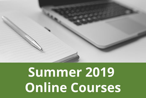 Summer 2019 online courses