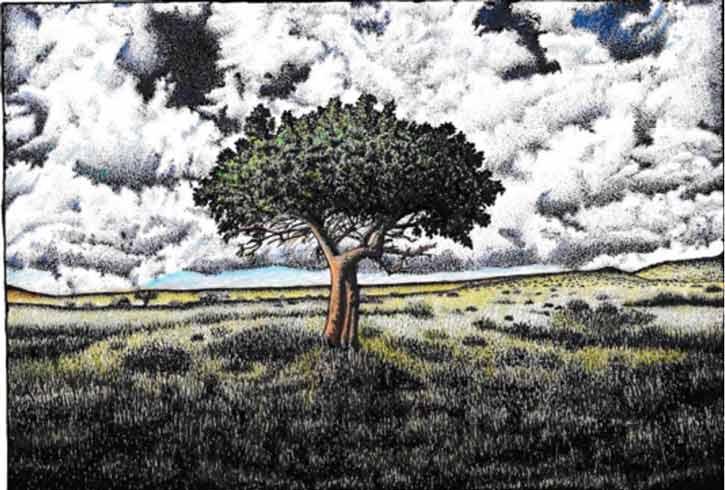 Ruari MacLeod - art